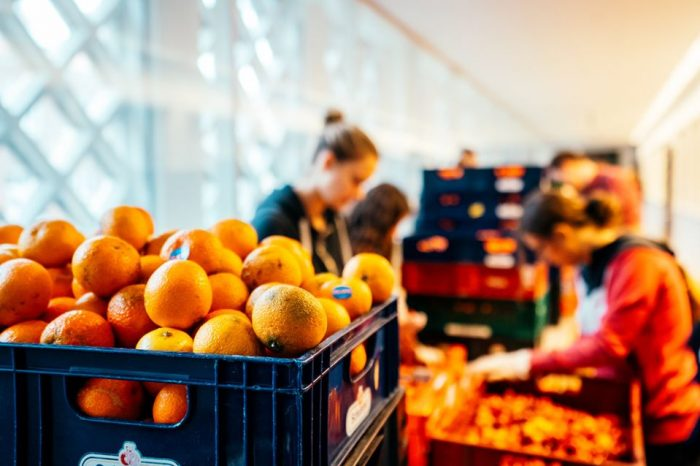 Copenhague face au défi du gaspillage alimentaire
